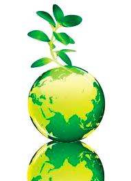 RSC-medioambiente